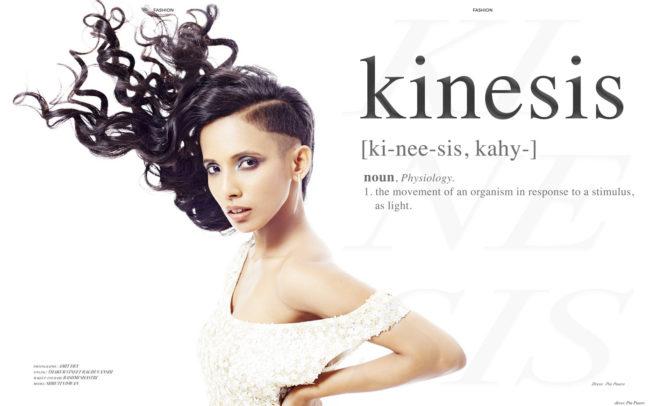 Kinesis by Amit Dey - Elegant magazine