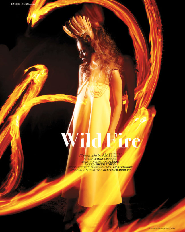 Wild Fire by Amit Dey